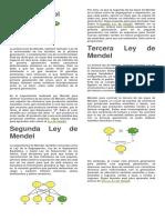 Ley de Mendel