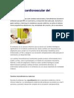 1. Fisiología Cardiovascular Del Embarazo
