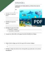 SEPTIMO.pdf