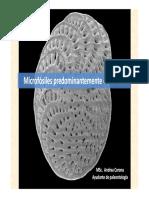 Microfósiles Calcáreos Geo