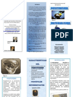 folleto-jaiver (1)