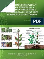 Mecanismos de Respuesta y Defensa Estructural y Bioquímica