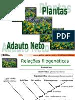 Botânica - Ciclos de Reprodução