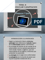 Patologia Tema 8 - 2019 Lesion Celular y Adaptacion