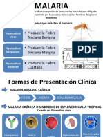 Malaria Infecto