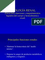 Liquidos Corp_Circulacion Renal