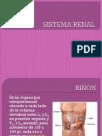 SISTEMA RENAL.pptx