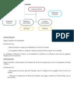 ANEXO II.organigrama y Funciones