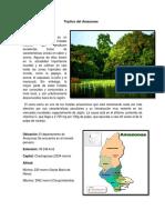 Tríptico Del Amazonas