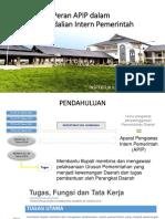 Peran APIP Dalam Pengendalian Intern Pemerintah