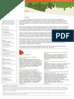 BoletinGobernabilidadAndinaNro1[1]