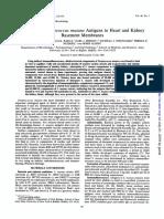Infection and Immunity 1984 Stinson 145.Full