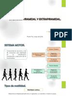 Presentación Vía Piramidal y Extrapiramidal