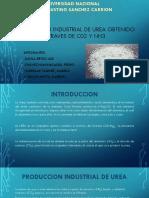Diapositiva de LA UREA