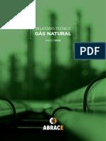 Gas ANP