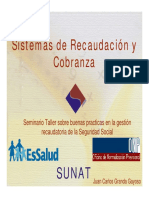 Sistemas de Recaudacion y Cobranza SS SUNAT Juan Carlos Granda G
