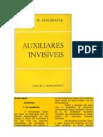 Auxiliares Invisíveis (rev).pdf