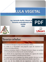 Fisologia Vegetal