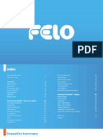 Felo Process Book