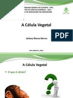 aula célula vegetal