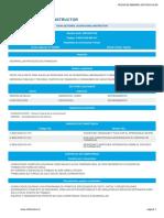 Perfil Instructor.pdf