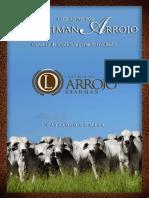 Catálogo Mesa 1º Leilão Touros Brahman Arrojo Completo