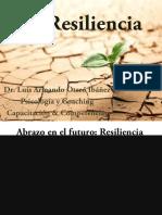 15laresiliencia-150813164730-lva1-app6892.pdf