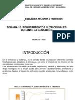 CLASE_10_BAN_2019_GESTACIÃ'N-1[1].pptx