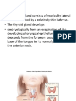 Class note on thyroid gland