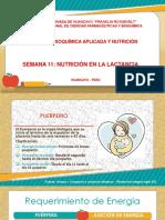 """Clase 11 Nutriciã""""n en La Lactancia-1[1]"""