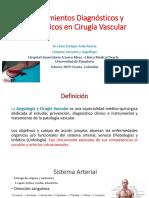 Procedimientos Diagnosticos y Terapeuticos Cx Vascular ENVIAR