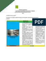 Proyecto Modulo Gestion de Riesgos 2017 (1)
