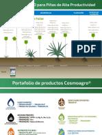 Plan Piña (Fase Fenologica) Perú