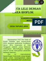 Budidaya Lele Sistem Bioflok