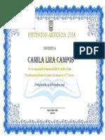 Diploma Asistencia