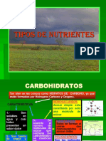 12820889-Nutrientes.ppt