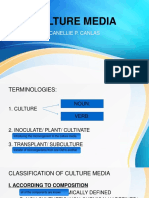 orca_share_media1564481818183.pptx