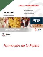 CalidadHuevo.pdf