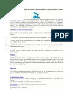 Análisis del HIMNO NACIONAL ARGENTINO.docx