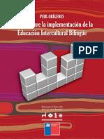 2011_Estudio Sobre La Implementación de La EIB_Orígenes