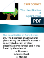 11. CROP SCIENCE-PPT-classification of Agricultural Crops13