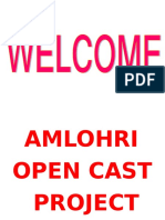 Risk Assessment of Amlohri Project
