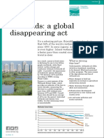 Factsheet3 Global Disappearing Act 0