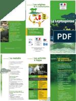 Les précautions contre la leptospirose