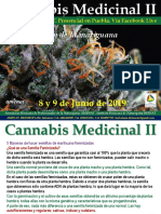 Feminización de Cannabis