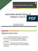 Control Postural y deglución.pdf