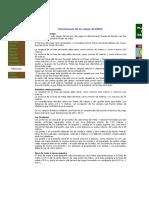 OFICAD - Dimensiones de un Campo de Fútbol.pdf
