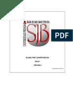 Silabo Cirugía I 2019-I UPSJB