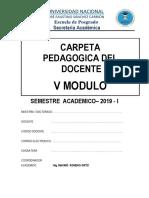Carpeta Pedagogica- 2019 - V Modulo
