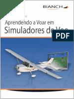 Aprendendo a Voar Em Simuladore - Denis Bianchini